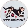 Canineorg