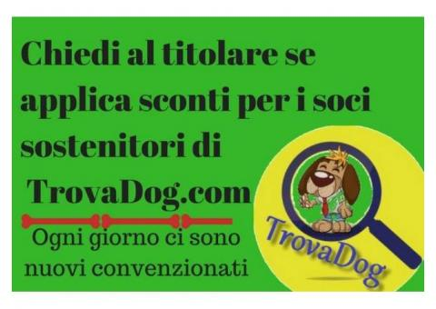 Ambulatorio Veterinario Città di Enna