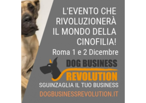 Dog Business Revolution